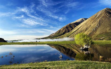 zealand nature lake calm water vapor meadow grass bare