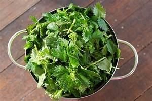 GourmetGirlfriend: How to cook Stinging Nettle