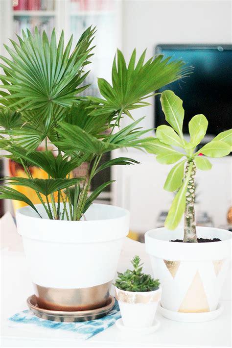 diy customiser ses pots de fleurs