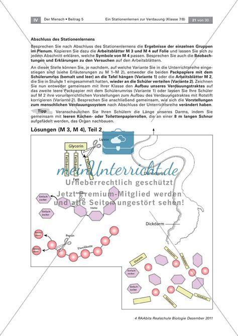 Ausgezeichnet Klasse 5 Wissenschaft Arbeitsblatt Bedruckbaren Ideen ...