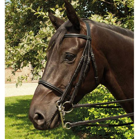 bridle double english leather heritage