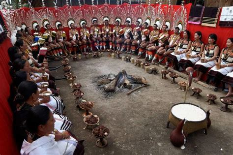 sekrenyi festival nagaland india   festival