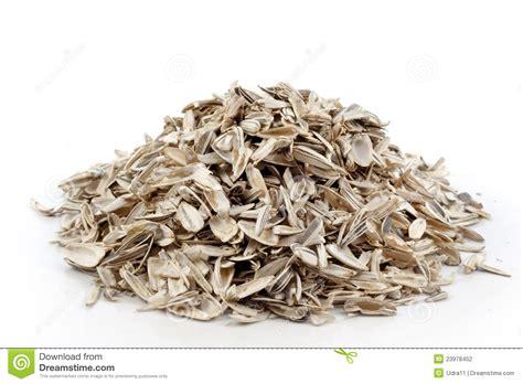 empty sunflower seeds stock photography image 23978452
