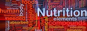 M S  In Nutrition And Wellness