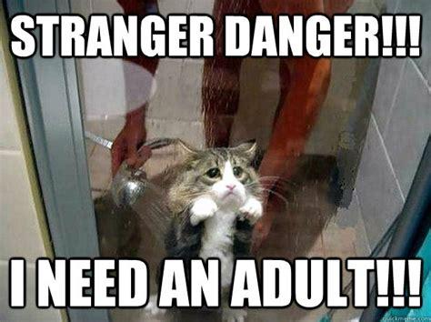 Stranger Danger Meme - pin by paula reyna maynez on cute animals pinterest