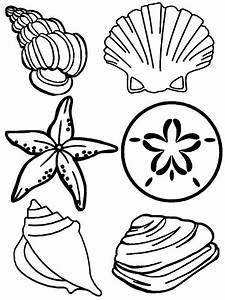 Plete Sea Shells Family Coloring Page Free Printable 18604