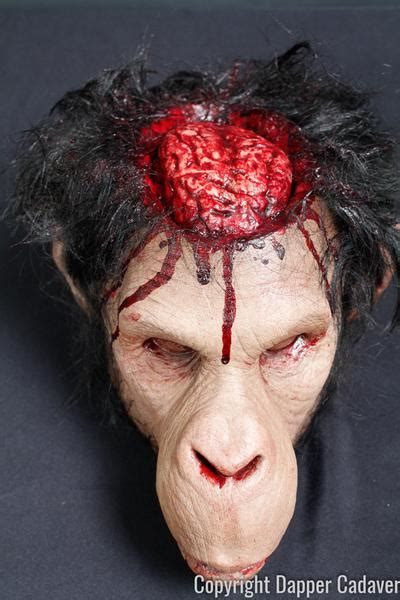 monkey brains head prop dapper cadaver props