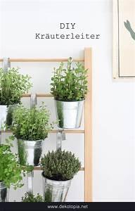 Pflanzen Für Drinnen : kr uterleiter f r drinnen selber bauen balkon pinterest diy home decor und house ~ Frokenaadalensverden.com Haus und Dekorationen