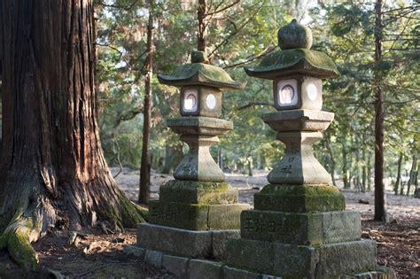 stock photo  kasuga taisha lanterns freeimageslive