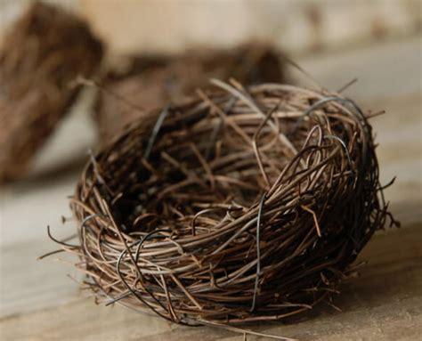 natural twig tiny bird nests bulk buy