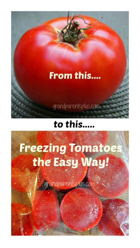 freezing tomatoes freezing tomatoes tomatoes and fresh on pinterest