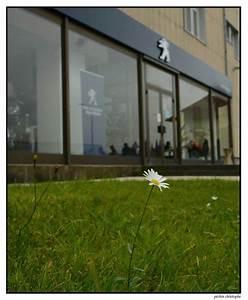Peugeot Motocycles Mandeure : manif 11 octobre 2011 facebook ~ Nature-et-papiers.com Idées de Décoration