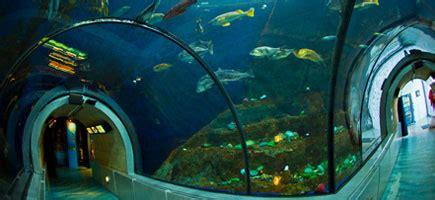 aquarium valence site officiel h 244 tel manoir le spa