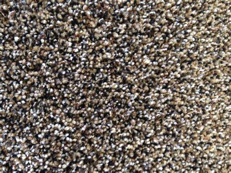 Legato Carpet Tiles Menards by Menards Carpet Tiles Pictures Of Menards Resilient