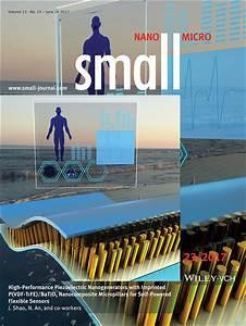 Small  Vol 13  No 23