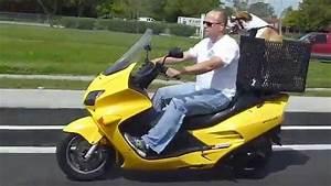 Dog riding motorcycle ACE - YouTube
