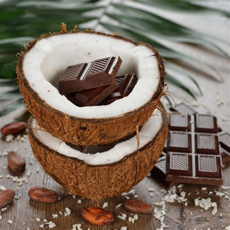 recette gateau chocolat noix de coco facile rapide