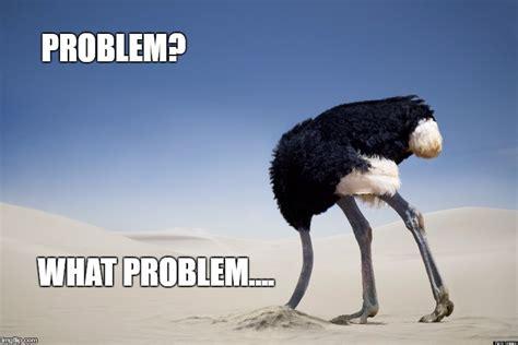 Ostrich Meme - ostrich head in sand imgflip