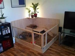 Wie Streiche Ich Meine Wohnung Ideen : die 25 besten ideen zu kaninchenstall auf pinterest ~ Lizthompson.info Haus und Dekorationen