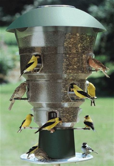 cardinal bird feeder cardinal bird feeder squirrel proof woodworking projects