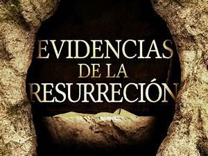 Resurrección de Jesús Veritas Fidei
