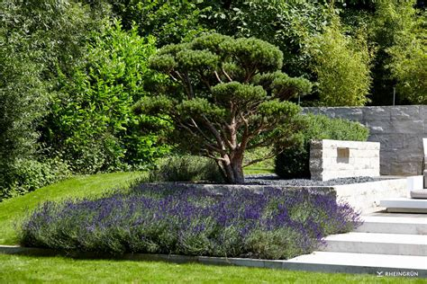 Gartenideen Mediterran by Mediterraner Garten Rheingr 252 N