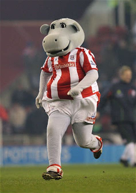 The Best Eleven: The Best English Soccer Mascots