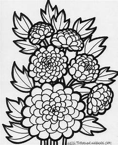 Flower Coloring Sheets | Free Coloring Sheet