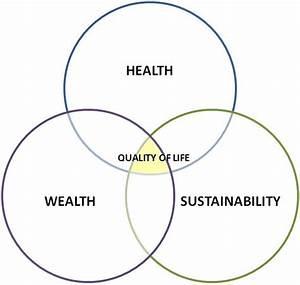 Venni Vidi Vici  U2013 R A D  Quality Of Life Diagram  U2013 Reader