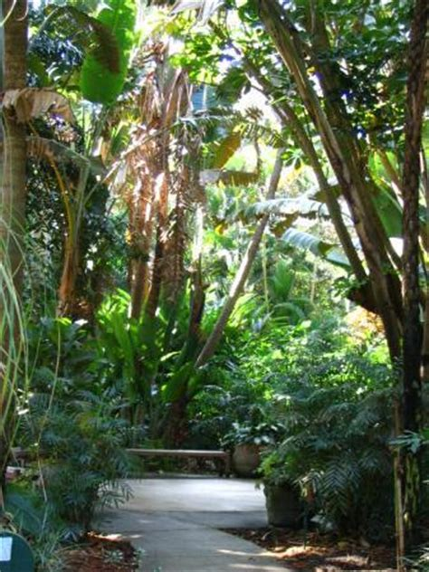 sunken gardens st pete sunken gardens st petersburg 2018 all you need to