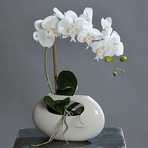 Kunstblumen Orchideen Topf : orchideen arrangements orchideen kunstblumen ~ Whattoseeinmadrid.com Haus und Dekorationen