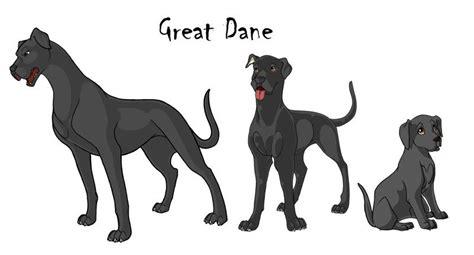 great dane color chart great dane color chart great dane growth chart wolf