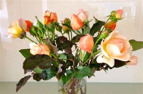 belinda shiny flowers hc set custom