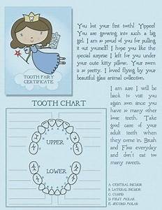 20 best tooth fairy images on pinterest teeth tooth With tooth fairy letters for lost teeth