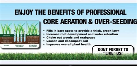 benefits of aeration fall green lawn care your last chance to grow green lawn fertilizing