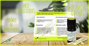 Lavande Anti Moustique : faites fuir les moustiques avec ces 5 huiles essentielles ~ Nature-et-papiers.com Idées de Décoration