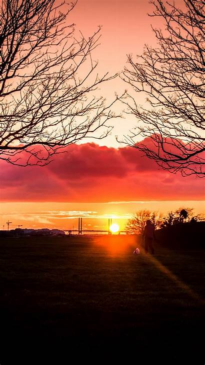Alone Sunset Silhouette Nature Wallpapers Horizon Solitude