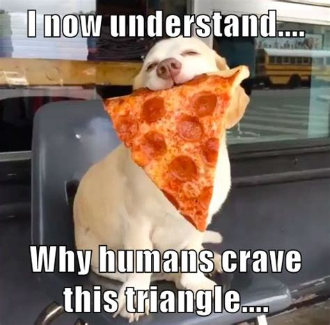 Meme Pizza - 17 best images about pizza hut memes on pinterest jokes pizza and perfect food