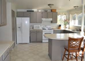 ideas for refinishing kitchen cabinets choosing the best painting kitchen cabinets trellischicago