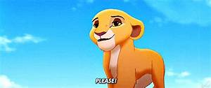 The Lion King 2 GIFs - Find & Share on GIPHY