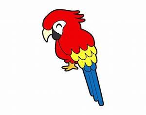 Dibujo de Guacamayo pintado por Jimena88 en Dibujos net el día 22 01 15 a las 18:38:07 Imprime