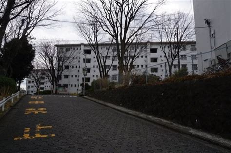 山 購入 神奈川