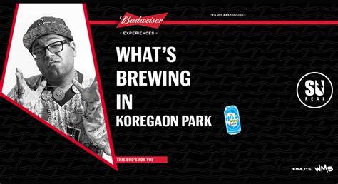 book   budweiser whats brewing  koregaon