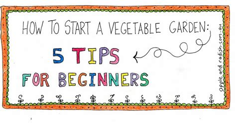 how to start a garden how to start a vegetable garden 5 gardening tips for