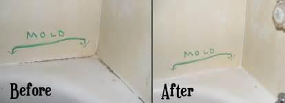Re Caulk Moldy Bathtub by Clean Mold From Bathtub Caulk Random Creativity