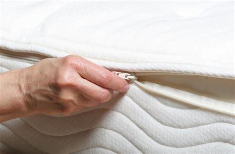 serta foam mattress bed bugs versus the memory foam zippered mattress cover