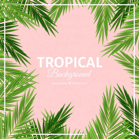 Palm Background Palm Leaves Tropical Background Vector Free