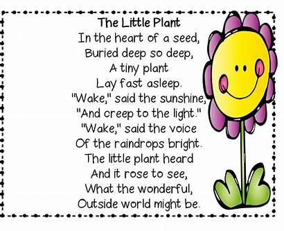 Poems Nature Poem Rhyme Spring Kindergarten English