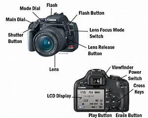 Slr Camera  U2013 Labelling The Parts