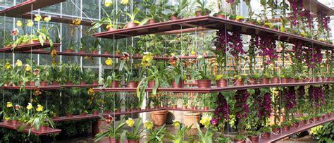 Skyline Curtains by Atlanta Botanical Garden Orchid Daze Seasonal Display